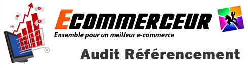 audit-referencement-boutique-en-ligne